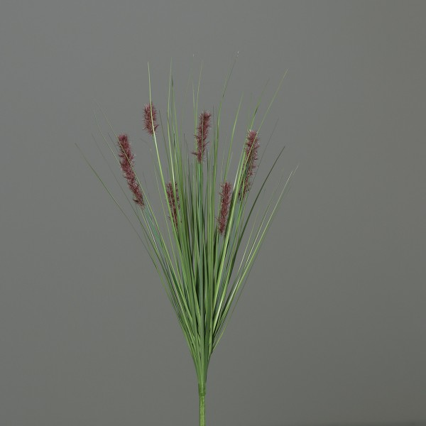 Katzenschwanzgras 60cm braun -ohne Topf- DP Kunstpflanzen Dekogras Grasbusch künstliches Gras