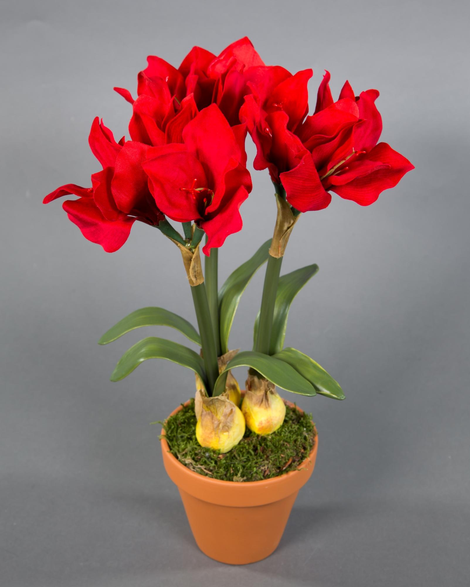 Weihnachtsstern im Topf 36cm rot PF künstliche Poinsettie Kunstblumen