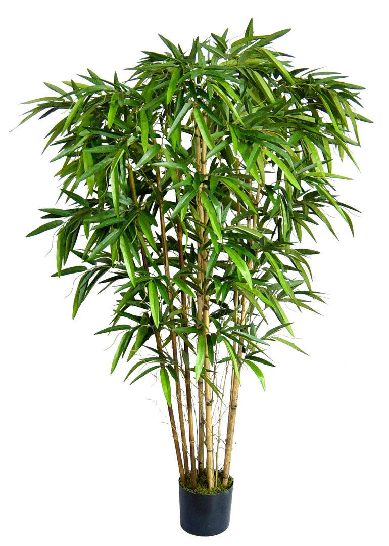 thai bambus 220cm da kunstbaum k nstlicher baum bambus kunstpflanzen bambus kunstb ume. Black Bedroom Furniture Sets. Home Design Ideas