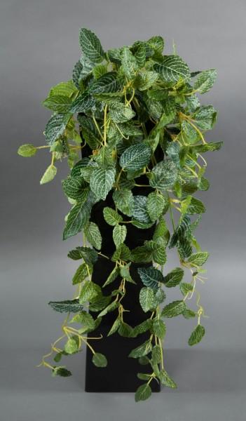 Fittonien-Ranke / Mosaik-Ranke Real Touch 65cm grün-weiß ZF Kunstpflanzen künstliche Pflanzen