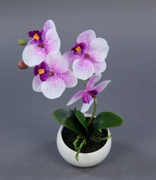 Orchidee Real Touch 26cm pink-weiß in weißer Keramikvase DP künstliche Blumen Kunstpflanzen