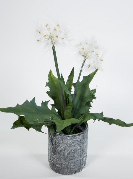 Pusteblumenpflanze / Pusteblume 42cm im Steintopf GA Kunstpflanzen Kunstblumen künstliche Pflanzen