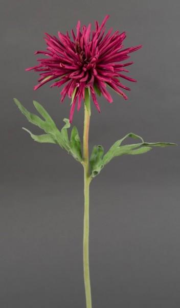 Nadel-Chrysantheme 46cm fuchsia CG Kunstblumen künstliche Chrysantheme Blumen Seidenblumen