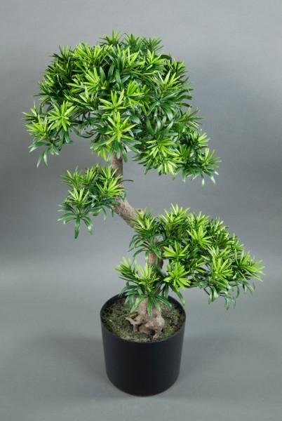 Bonsai Podocarpus 70cm im Topf CG künstlicher Baum Kunstbaum Kunstpflanzen