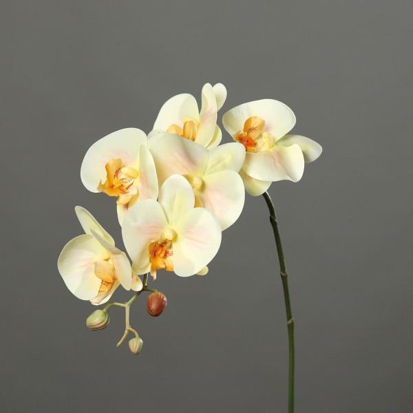 Orchideenzweig Real Touch 80cm salmon DP Kunstblumen künstliche Orchidee Orchideen Blumen