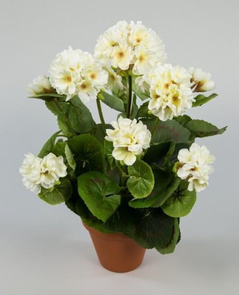 Geranie 36cm weiß-creme -ohne Topf- LM Kunstpflanzen künstliche Blumen Pflanzen Kunstblumen