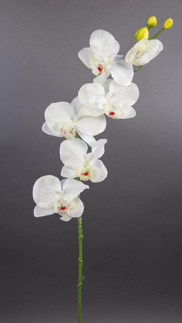orchideenzweig 72cm wei creme dp kunstblumen k nstliche. Black Bedroom Furniture Sets. Home Design Ideas