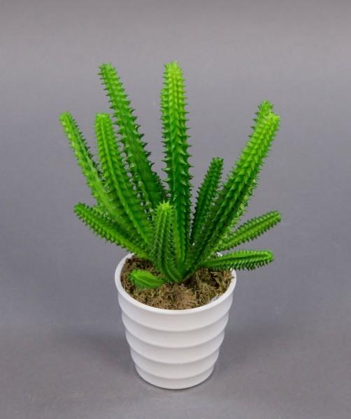 Fingerkaktus 20cm im weißen Dekotopf PF künstliche Pflanzen Kakteen Kunstpflanzen künstlicher Kaktus