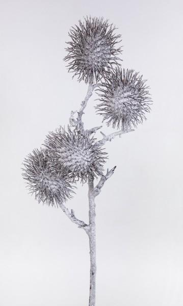 Distelzweig geeist 60cm DP Kunstzweig künstlicher Zweig mit Disteln Eis Schnee