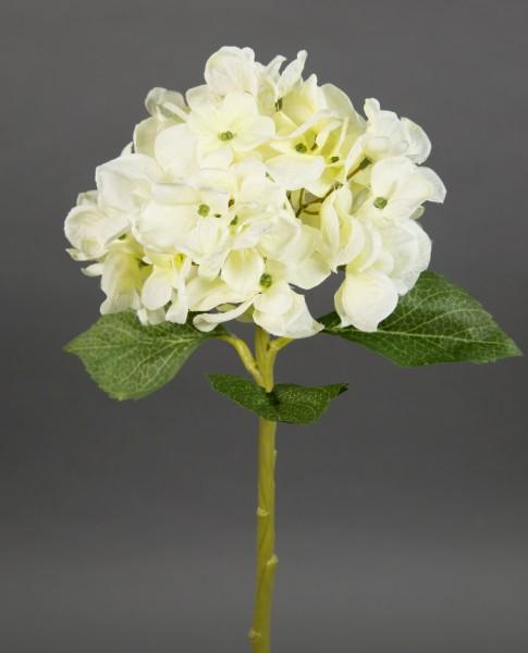 Hortensie Aqua 36cm creme-weiß FT Seidenblumen Kunstlbumen künstliche Blumen Hortensien