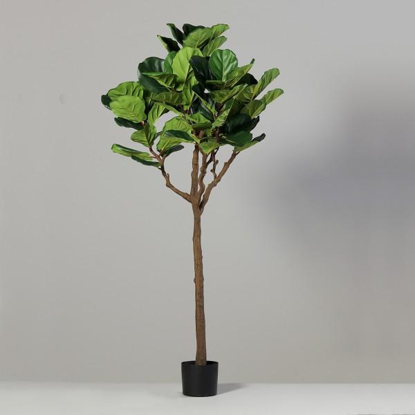 Geigenfeige 180x70cm DP Kunstbaum Kunstpflanzen künstlicher Baum Ficus Lykra künstliche Feige