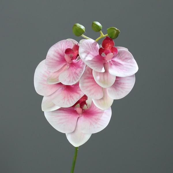 Orchideenzweig Real Touch 36cm rosa-pink DP Kunstblumen künstliche Orchidee Orchideen Blumen