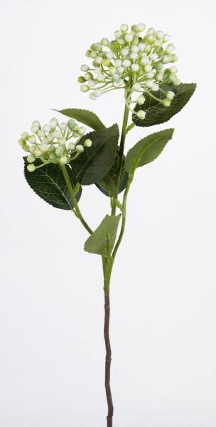 Schneeball / Viburnum Zweig 55cm weiss FT Kunstblumen Kunstpflanzen künstliche Blumen