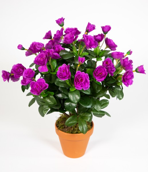 Azalee 40cm purple im Topf ZF Kunstpflanzen Kunstblumen künstliche Blumen