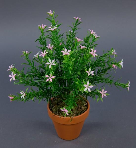 Sternblütenbusch 28cm rosa im Topf GA Kunstpflanzen künstliche Pflanzen Blumen Kunstblumen