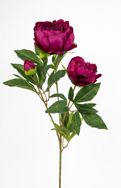 Pfingstrose Nature 72cm fuchsia CG Kunstblumen Seidenblumen künstliche Blumen Päonie