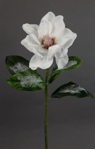 Magnolie mit Schnee- und Eiskristallen 54cm DP Kunstpflanzen Seidenblumen künstliche Blumen Pflanzen