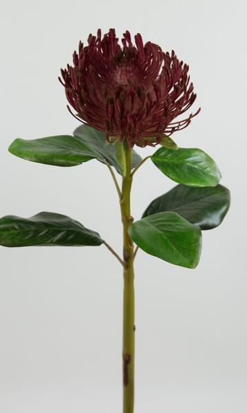 Protea Deluxe 62cm bordeaux DP Kunstblumen Seidenblumen künstliche Blumen