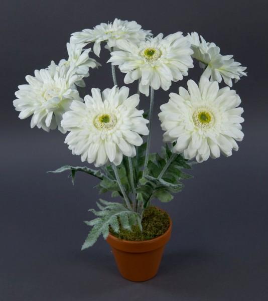 Gerbera 45cm weiß im Topf LM Kunstpflanzen künstliche Pflanze Blumen Kunstblumen