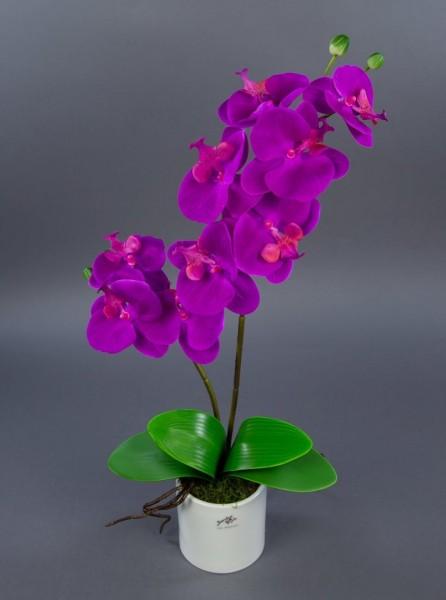 Orchidee Real Touch 60cm fuchsia im weißen Keramiktopf GA künstliche Blumen Kunstpflanzen Kunstblume