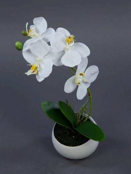 Orchidee Real Touch 26cm weiß in weißer Keramikvase DP künstliche Orchideen Kunstpflanzen Kunstblume