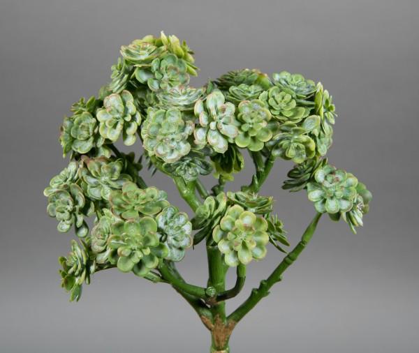 Sukkulente Sempervivum / Hauswurz 24cm grün -ohne Topf- DP Kunstpflanzen künstliche Sukkulenten