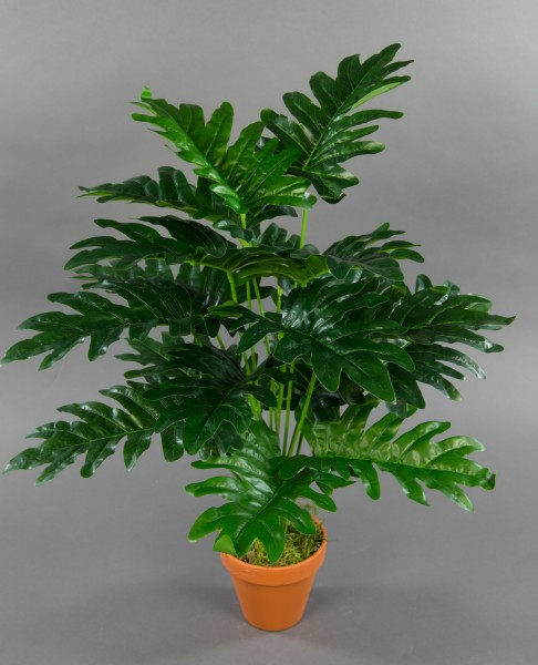 Monstera Real Touch 60cm grün im Topf ZF Kunstpflanzen künstliche Pflanzen Monsterapflanze