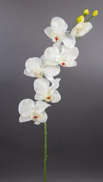 Orchideenzweig 72cm weiß-creme DP Kunstblumen künstliche Orchidee Orchideen Blumen Seidenblumen