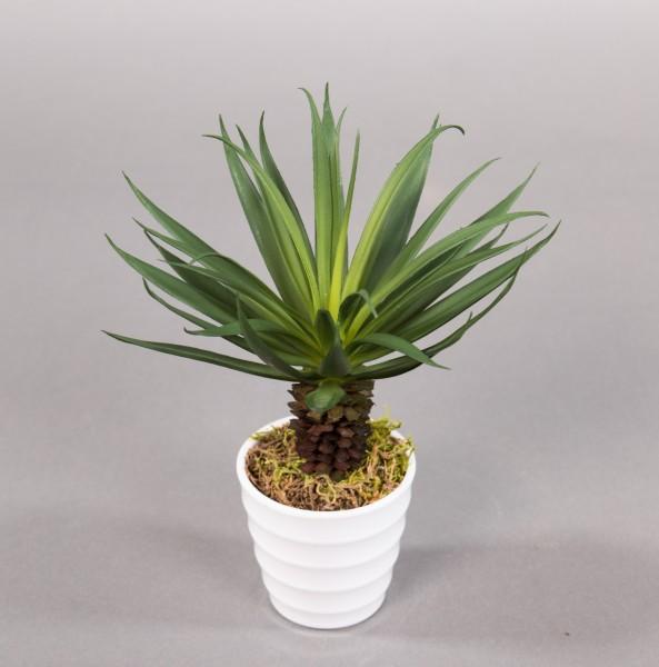 Dracena 22cm im weißen Dekotpf YF künstliche Pflanzen Palme Kunstpalmen Kunstpflanzen