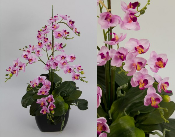 Orchideen-Arrangement II rosa-pink im schwarzen Dekotopf CG Kunstblumen künstliche Orchidee