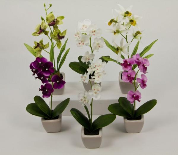 6er Orchideen-Set im weißen Keramiktopf DP künstliche Blumen Orchidee Kunstblumen