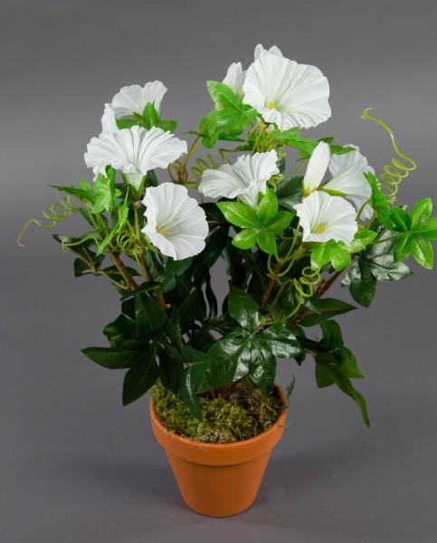 Petunienbusch 40cm weiß im Topf ZF künstliche Pflanzen künstliche Petunie Kunstblumen Kunstpflanzen