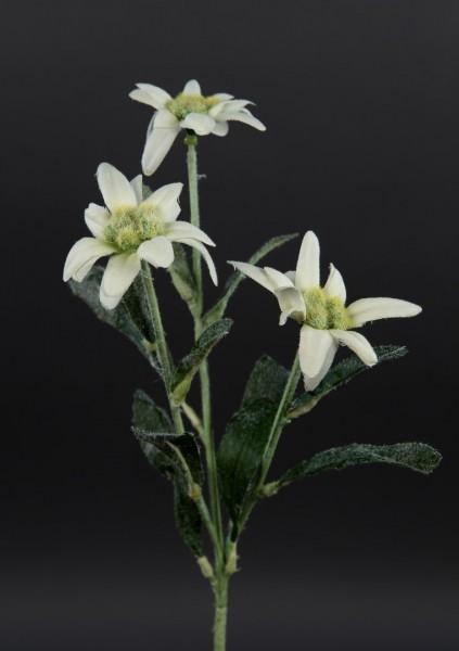 Künstlicher Edelweißzweig / künstliches Edelweiß 28cm DP Kunstblumen Seidenblumen künstliche Blumen