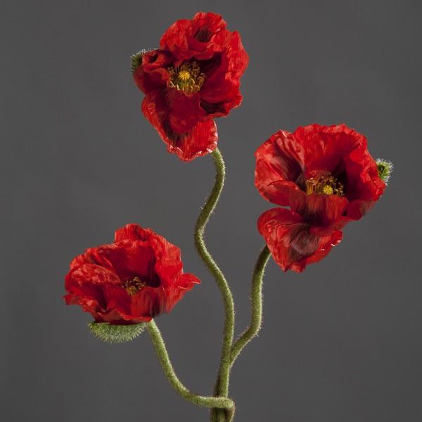 Mohnbund mit 3 Mohnzweigen 70cm rot DP Kunstblumen künstliche Blumen künstlicher Mohn Papaver