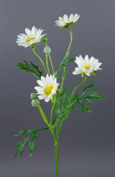 Margeritenzweig 56cm weiß DP Kunstblumen Seidenblumen künstliche Blumen Margerite