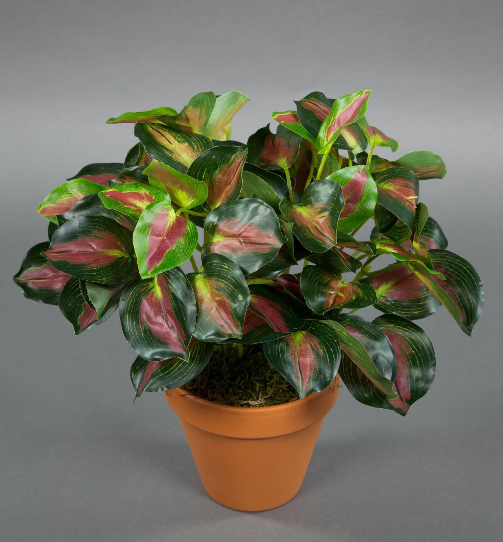 buntnessel 28cm gr n rot im topf zf kunstpflanzen k nstliche pflanzen nessel ebay